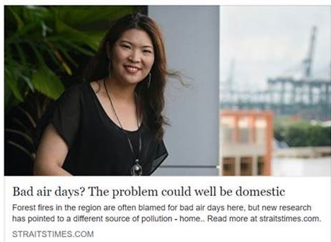 Bad Air Days? The Problem could well be domestic